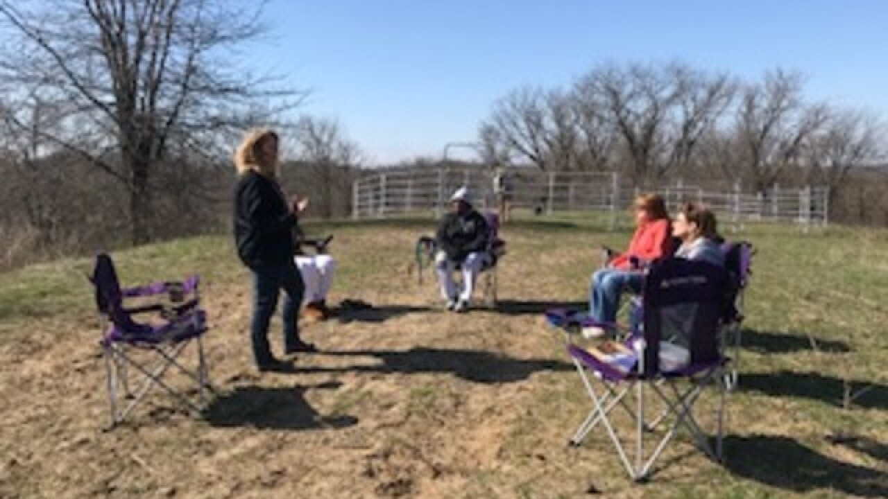 Equine therapy helping heal trauma