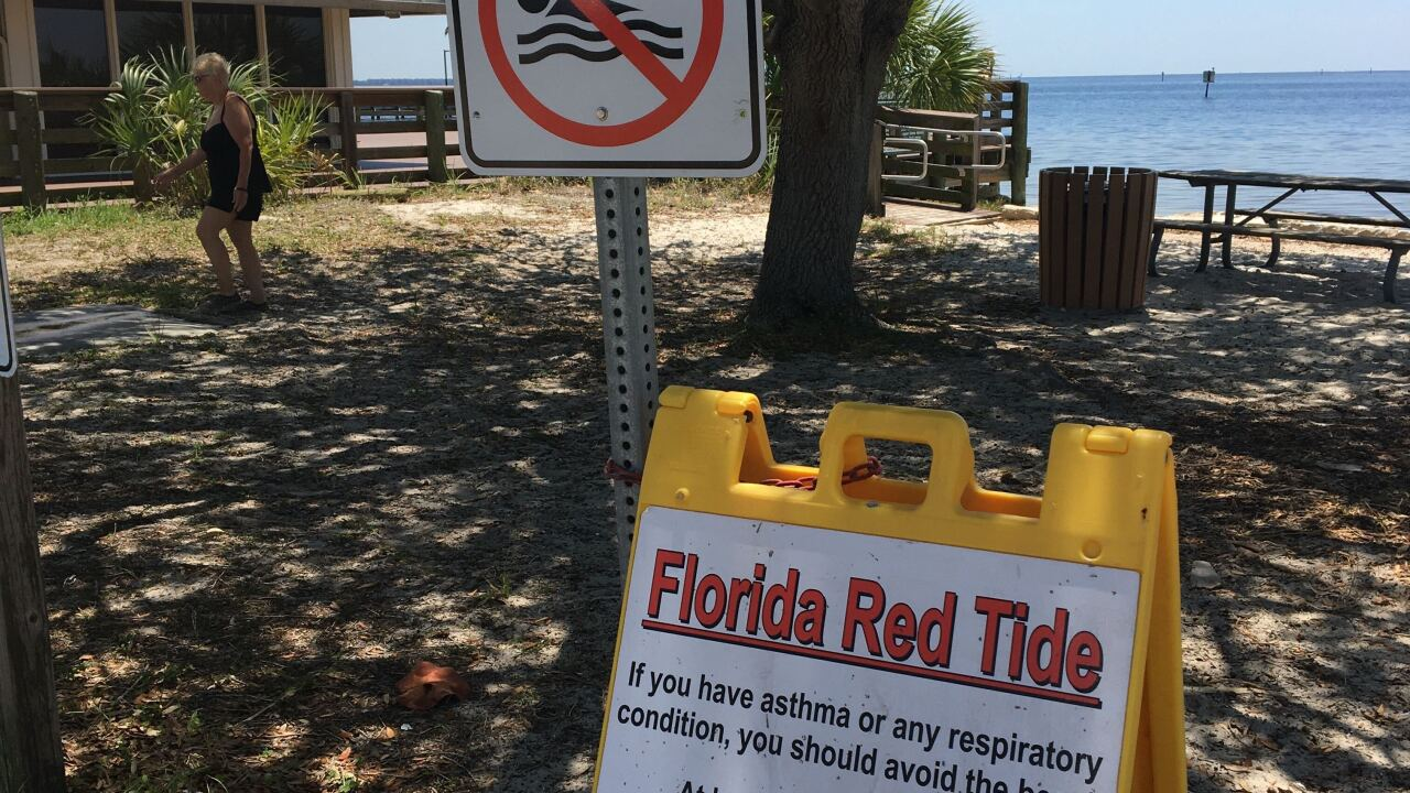 10,000 lbs. of dead fish removed from Charlotte County in two days.
