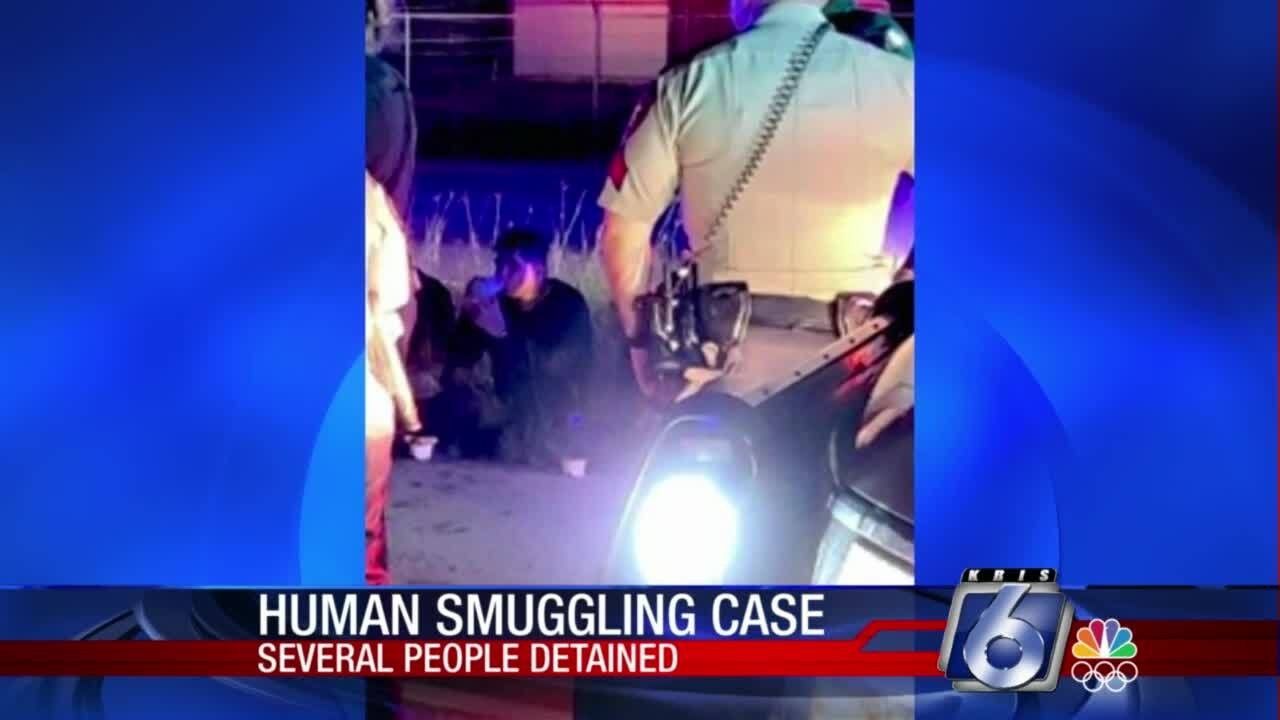 Group of suspected undocumented immigrants arrested overnight