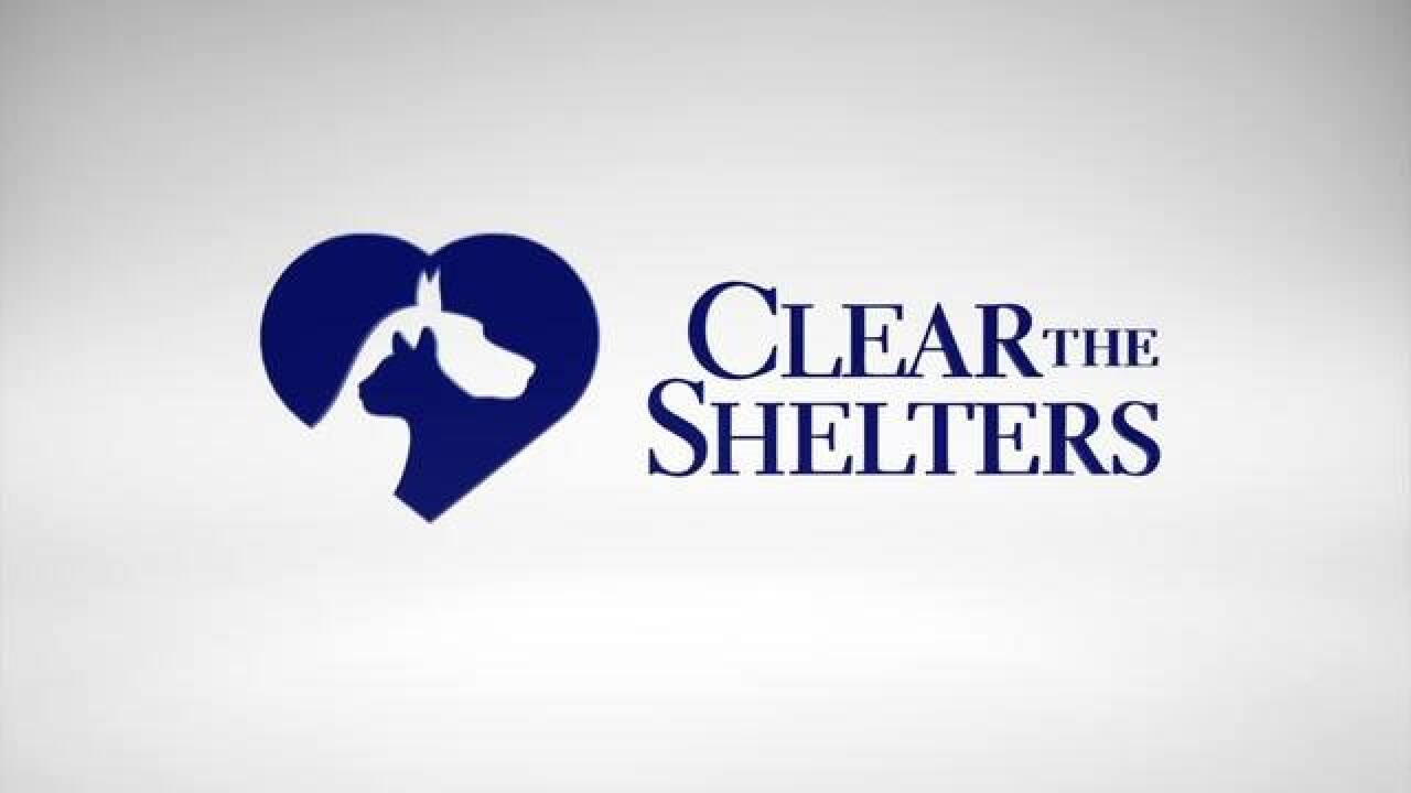 Save the date: Clear the Shelters on August 18
