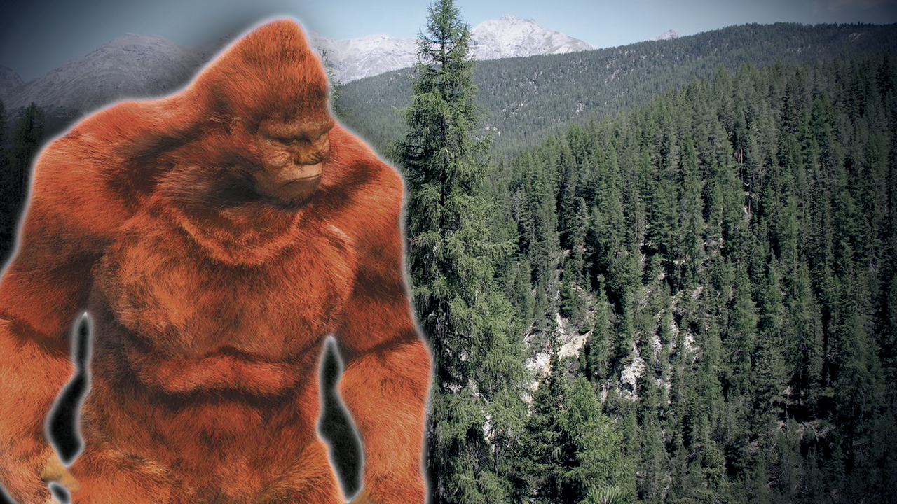 Police ask residents not to shoot Bigfoot after sighting reported