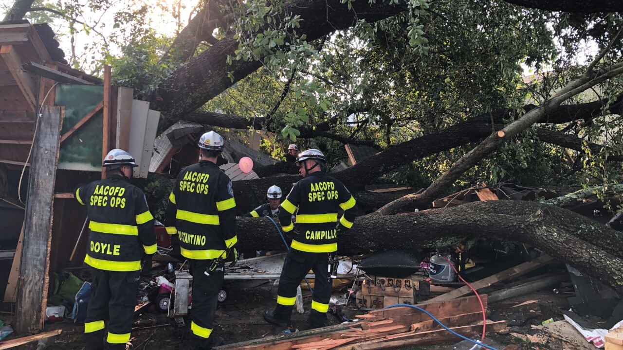 More than 20 people injured at child's birthday party after a tree falls on a garage