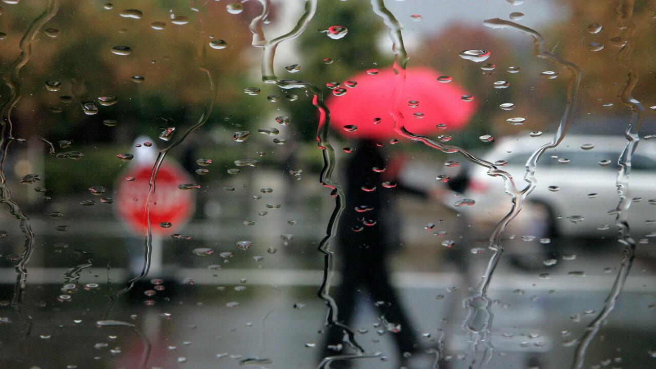 Wet Weather umbrella rain