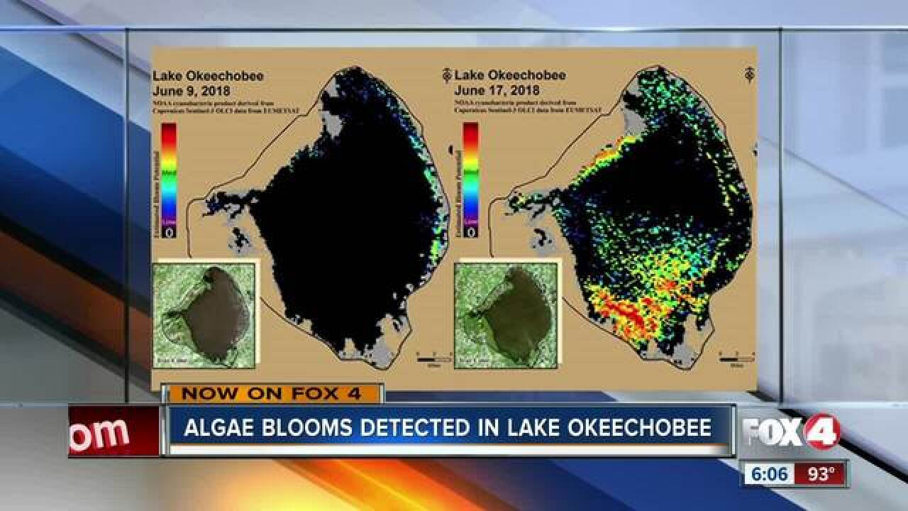 Images show algae activity on Lake Okeechobee