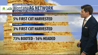 Montana Ag Network Weather: June 18th