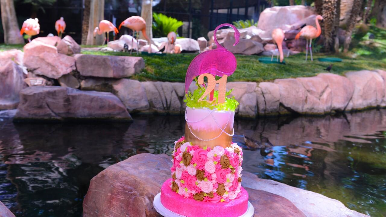Flamingo Las Vegas_Wildlife Habitat_Peachy's Birthday_BSP_7400.JPG