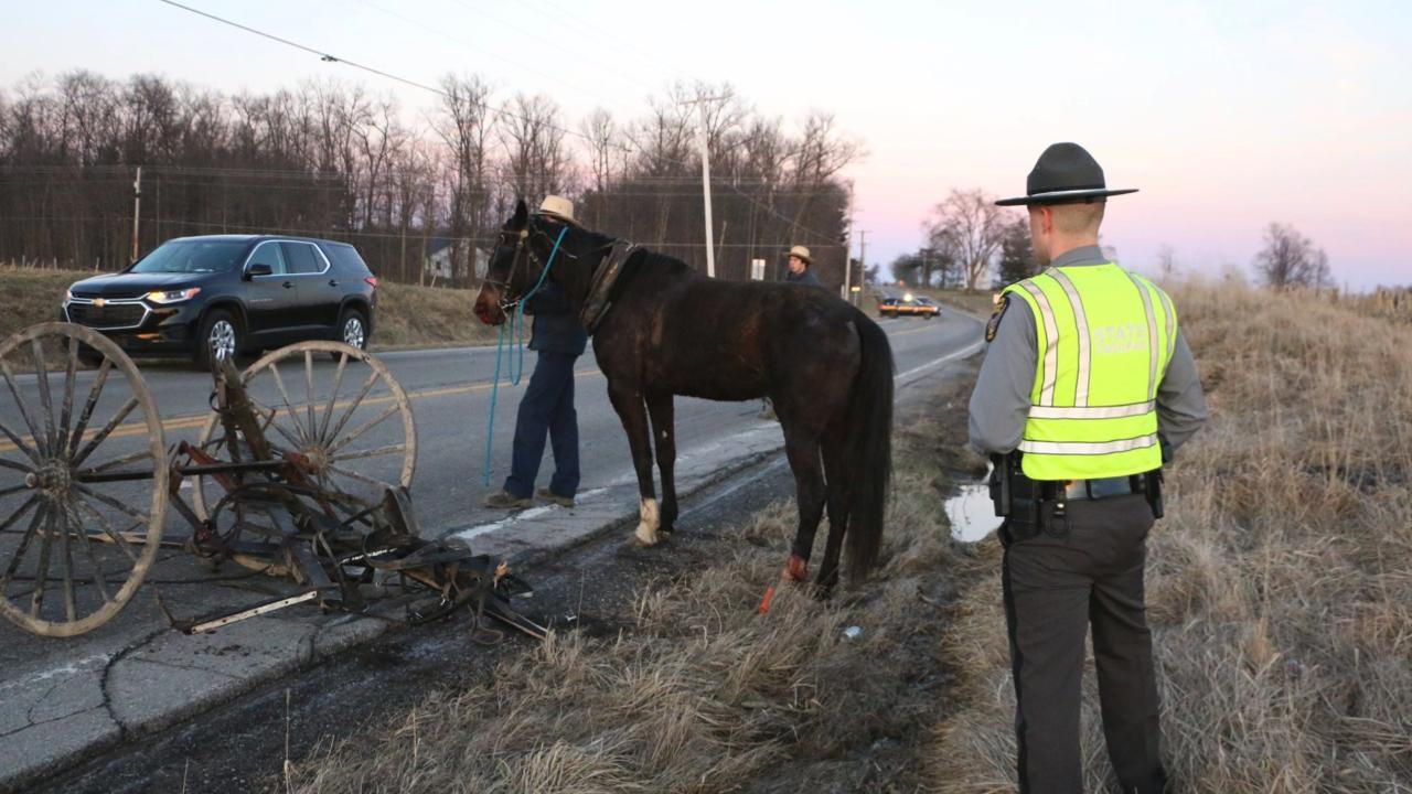 Horse and buggy crash sr96