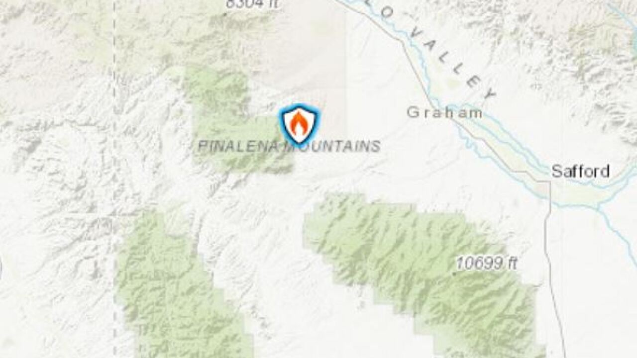 The Jackson Fire started July 11 near Safford.
