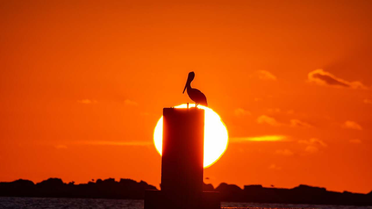 Sun Setting in the Coastal Bend - Photo By: FB Coastal Bend Weather Watcher Jim Quisenberry