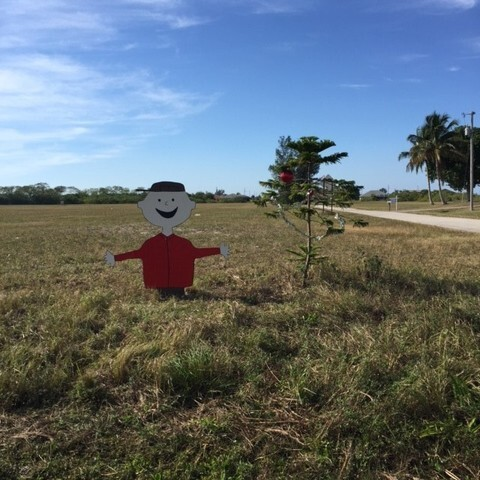 Photos: Charlie Brown Christmas display in Cape Coral