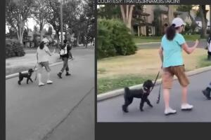 Woman in viral video in which she questions a Black man says his race had nothing to do with it