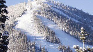 17-year-old girl dies after skiing into tree at Winter Park Resort