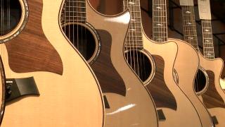 taylor guitars el cajon guitars