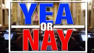 """""""Yea or Nay!"""""""