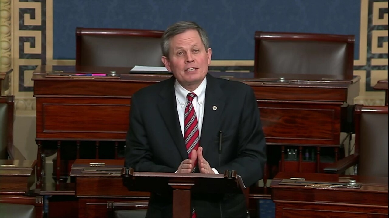 Daines-impeachment.jpg