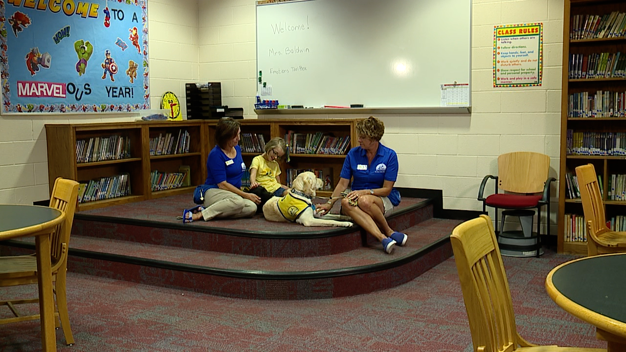 Eight-year-old raises money for service dogs
