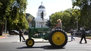 Tractors Of Parade