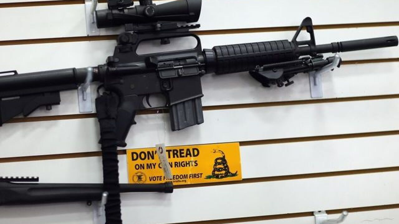 Florida House votes down assault weapon ban