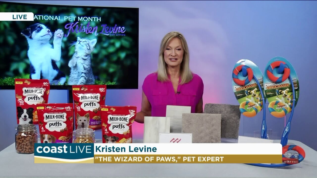 """Pet tips and tricks form the """"Wizard of Paws"""" on CoastLive"""