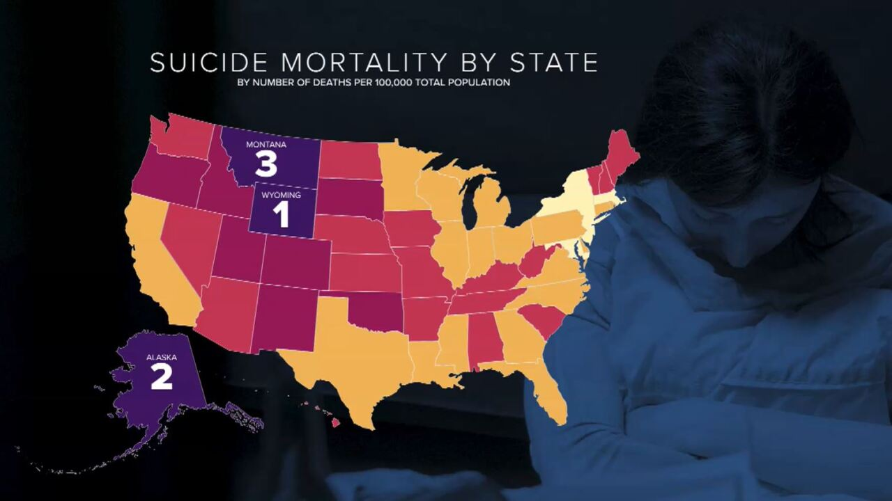 States by Suicide Rate