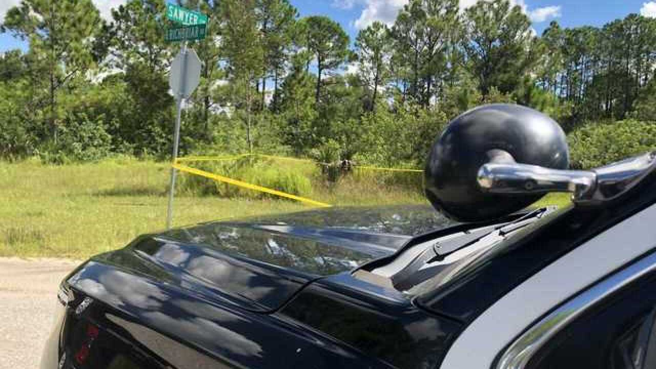 Police investigating suspicious death in North Port as homicide