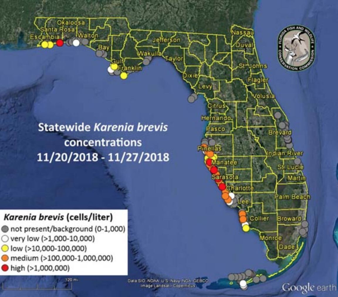 Red tide map 11-27-18.jpg