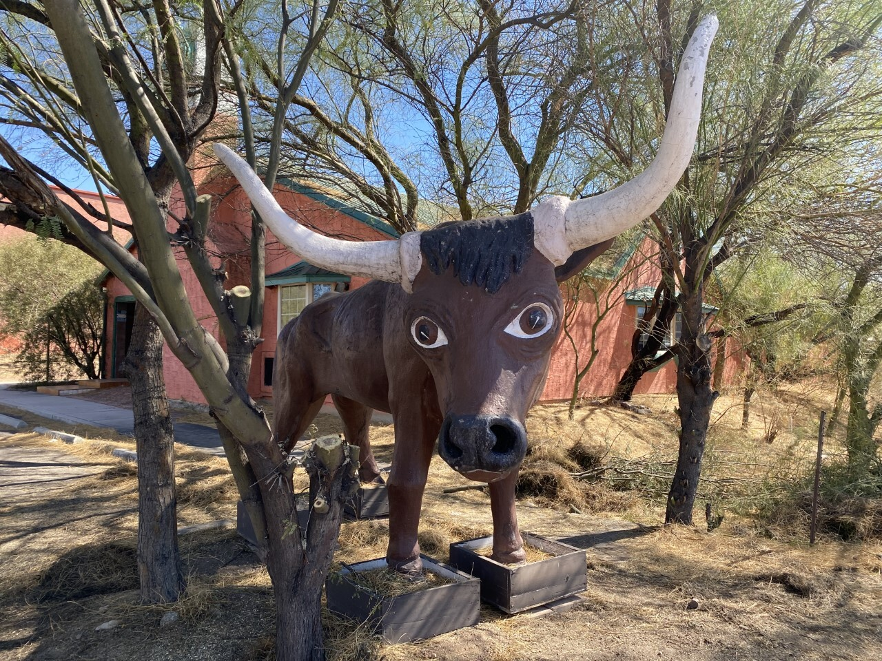 Magic Carpet Golf bull statue