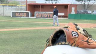 Alice Coyotes Baseball