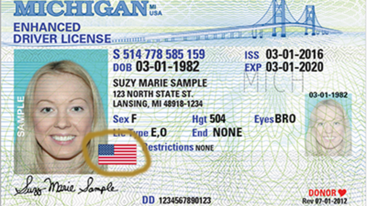 Michigan Need Fly To You In License Get Why New Might 2020 Driver's A