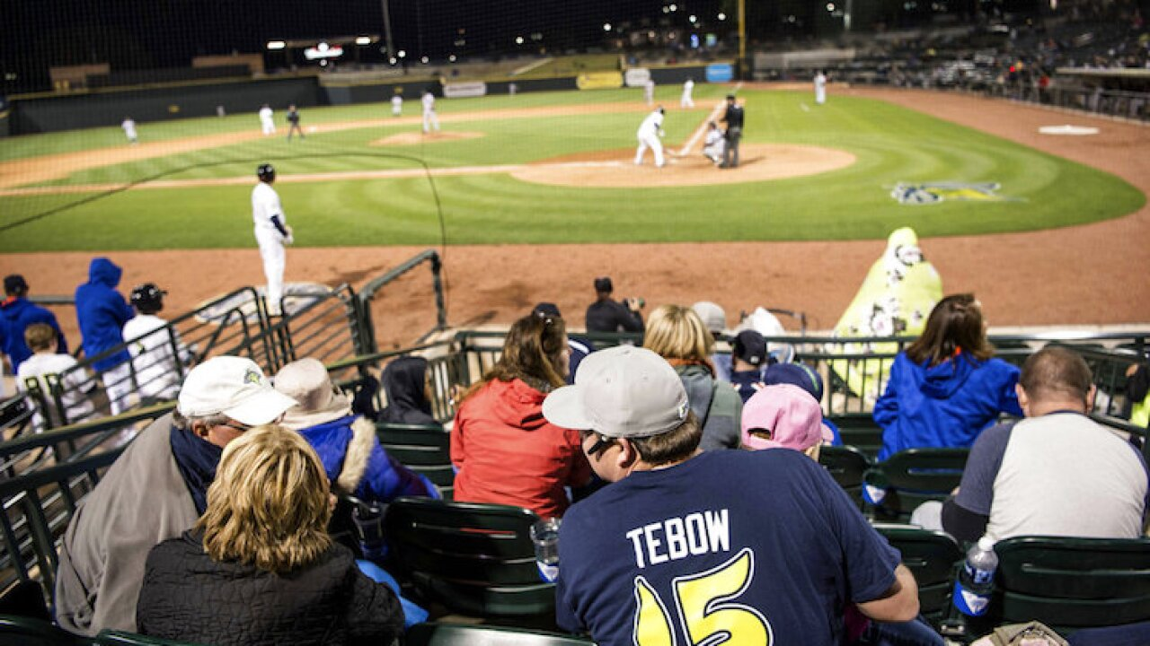 Tebow Minor Leagues Baseball