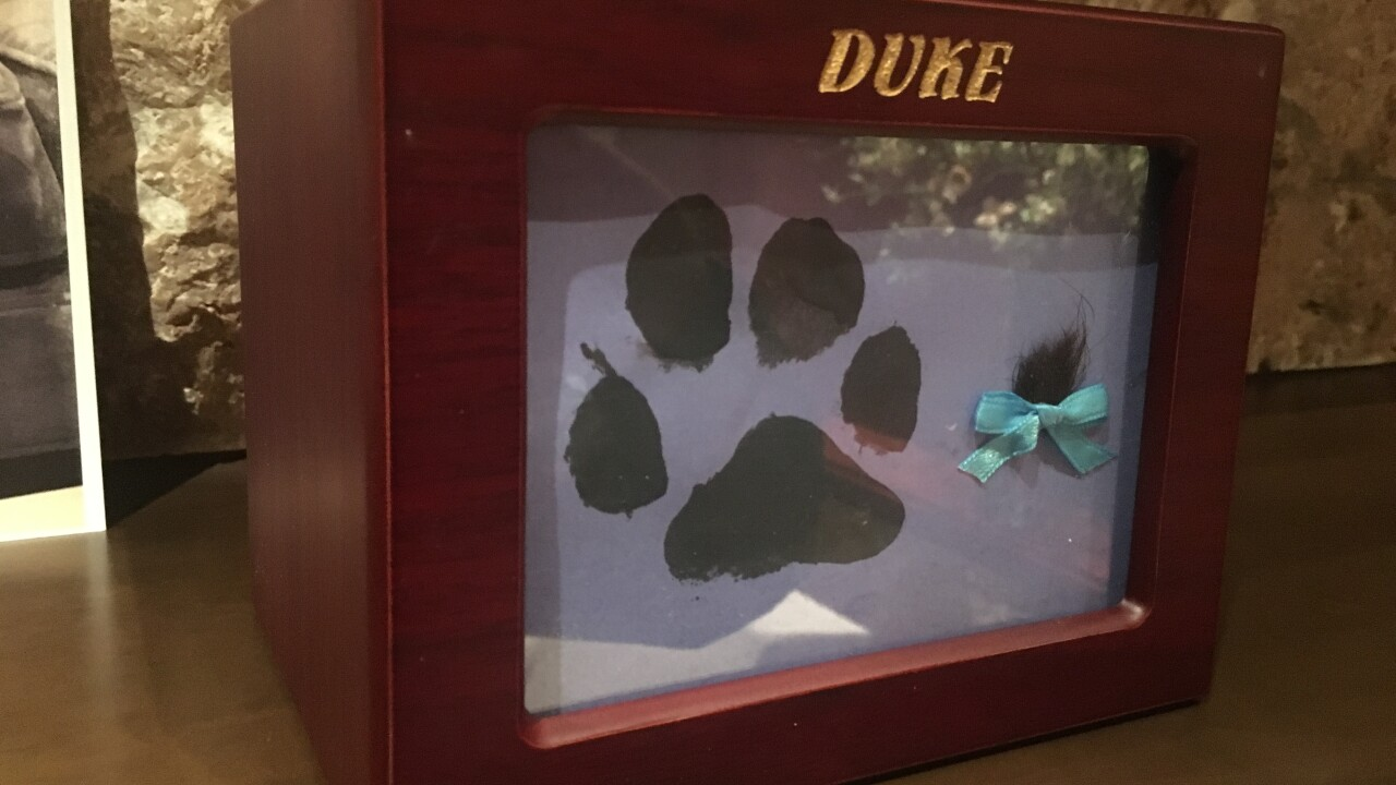 Las Vegas family suspects cremated pet remains of beloved dog aren't his