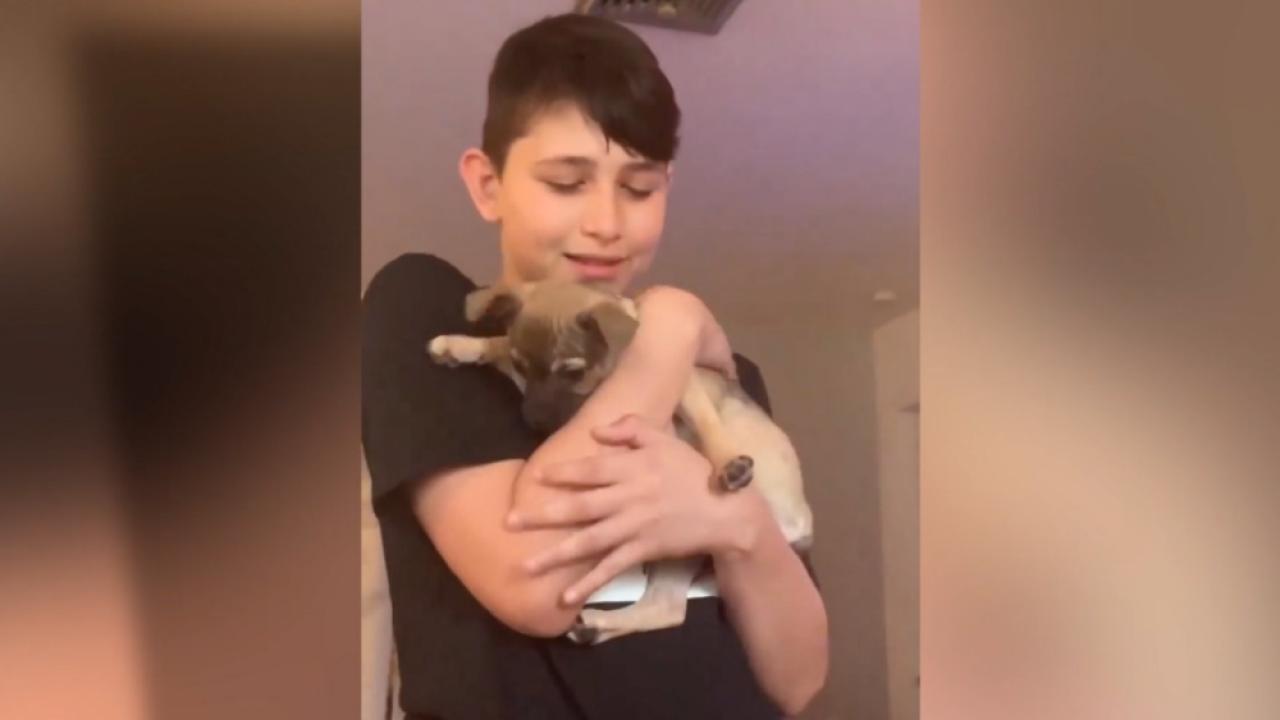 boy with puppy