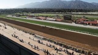 Racing Season Ends At Santa Anita After 30th Horse Dies