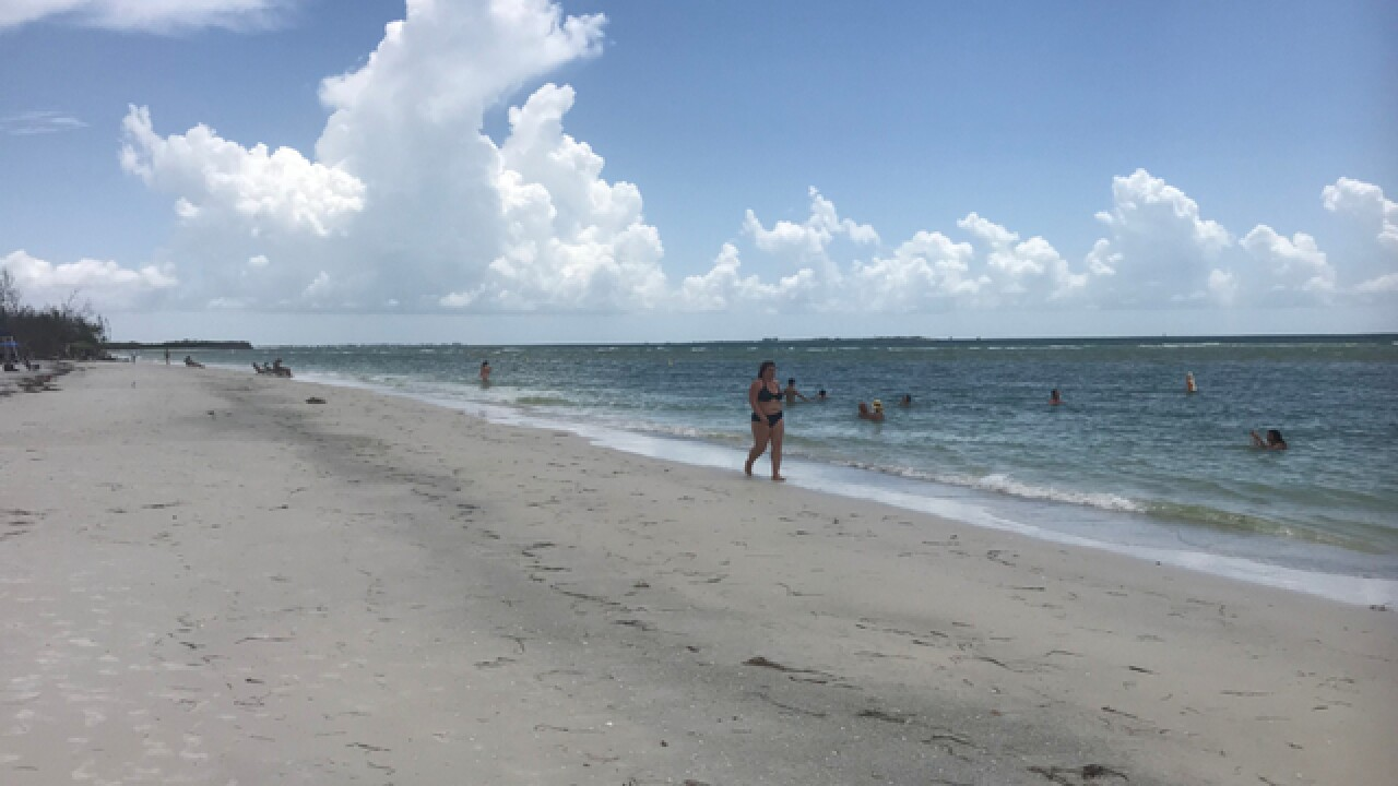 Experts closely monitor red tide near Pinellas