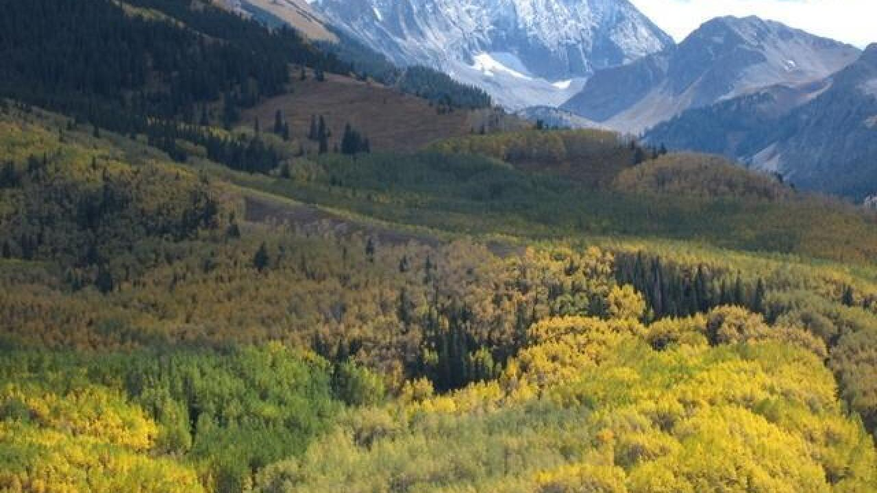 US Forest Service releases draft decision on Maroon Bells
