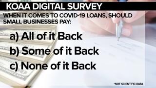 SURVEY Covid Loans FSG.jpg