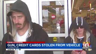 Crime Stoppers: Thieves Take Gun, Credit Cards From Vehicle
