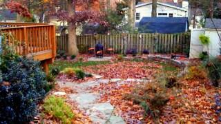 Your Fall GardeningChecklist