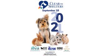 clear the shelters 9-16-21.PNG