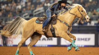 Kinsel American Rodeo.png