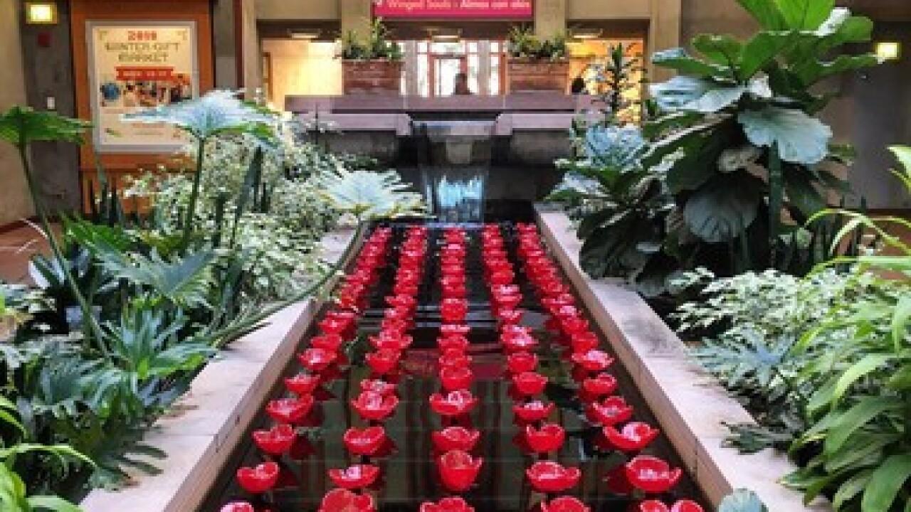 Denver Botanic Gardens VFW Post 1's Glass...