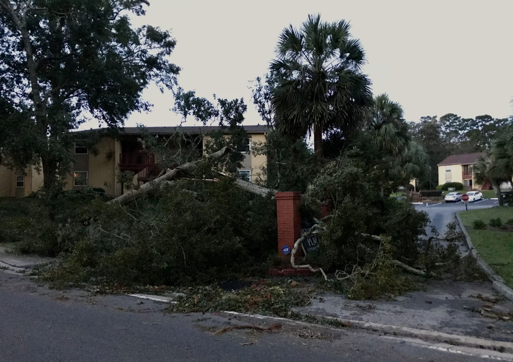 PHOTO GALLERY: Hurricane Michael - 11
