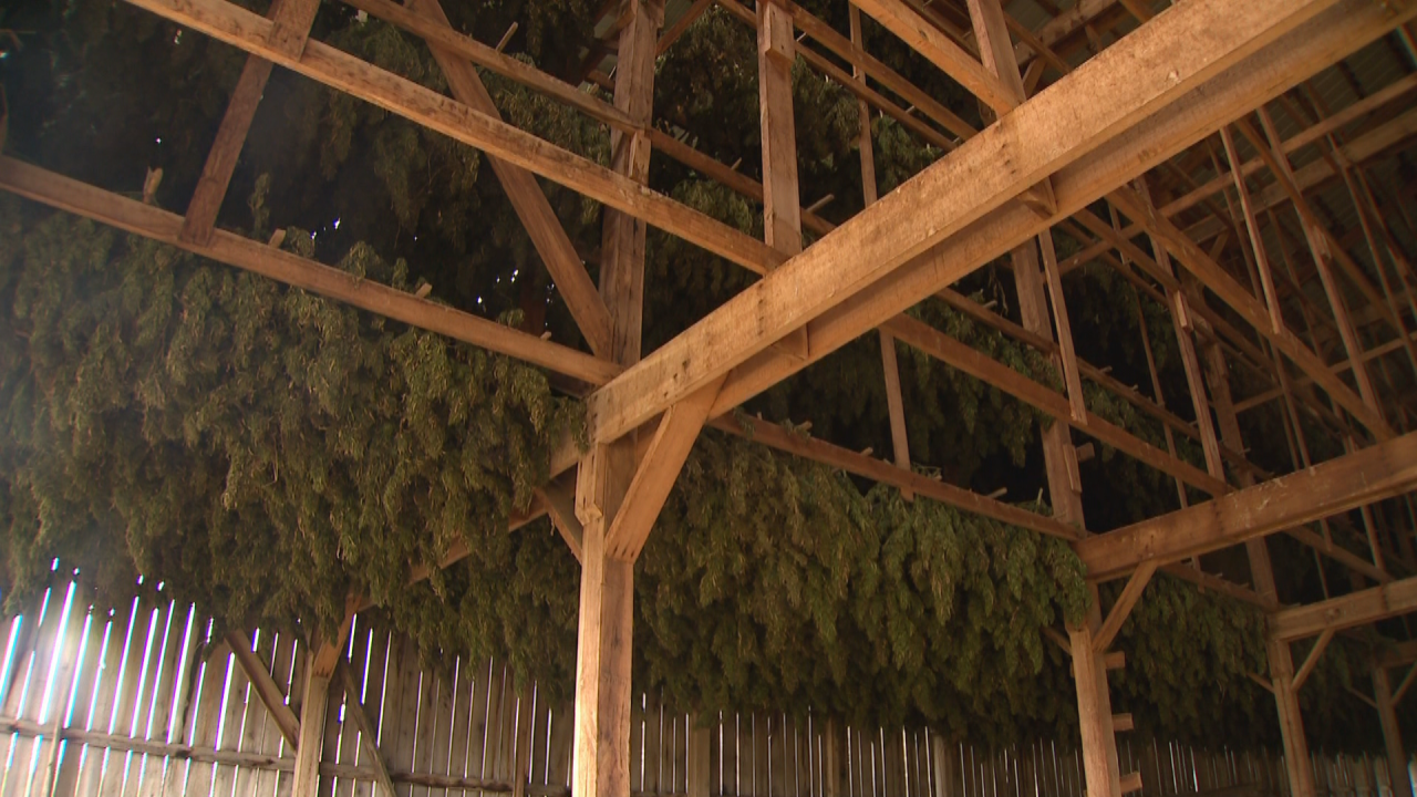 hemp barn.png