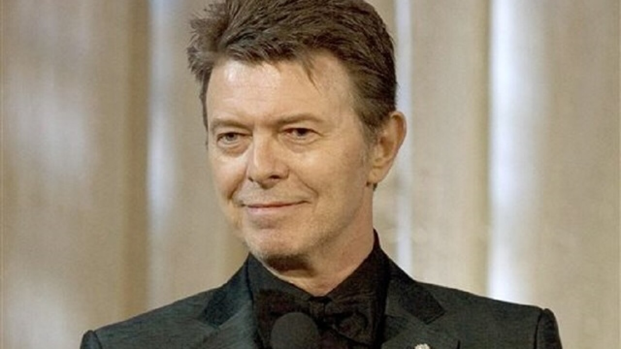 Musicians turn out for David Bowie tribute conce