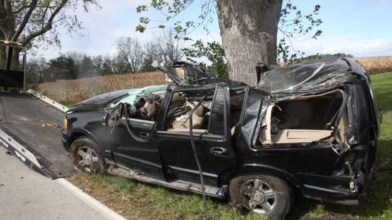 Racine woman killed after tree falls on car