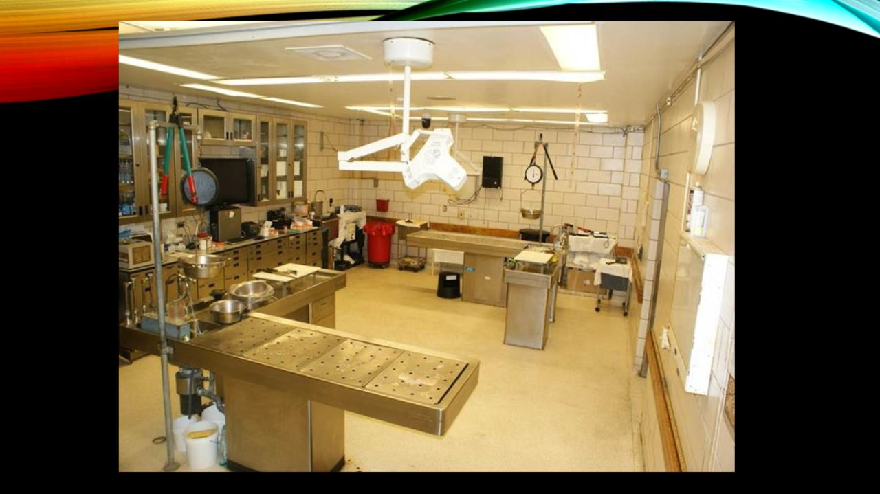 Old Hamilton County autopsy room