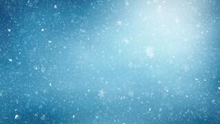 snow generic