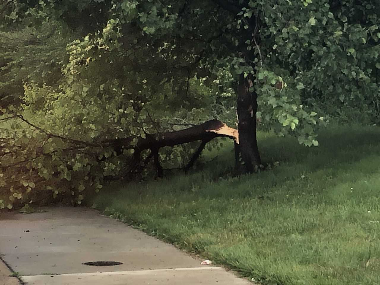 storm damage harford.jpeg