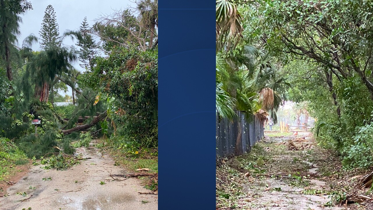 Sunday's storm blew down trees and knocked down debris at Dubois Park in Jupiter.