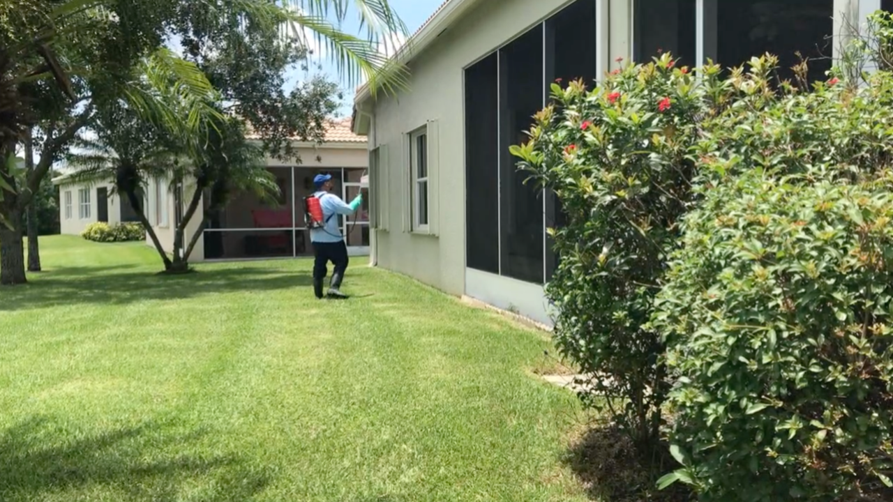A Treasure Coast pest control company has been in business for the last 25 years, but claims a brand new employee has been its best hire to date.